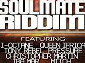 Music-Soul Mate Riddim-2013.