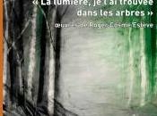 Exposition lumière, l'ai trouvée dans arbres œuvres Roger Cosme Estève Musée Beaux-Arts Gaillac