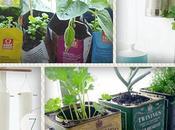verdure dans cuisine!