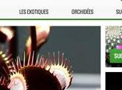Nouveau site Karnivores.com cadeau