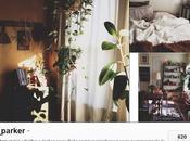 Instagram comptes favoris