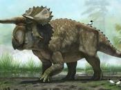 nouveau dinosaure mystérieux gros