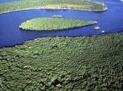 Brèsil Côte découverte Réserves forêt atlantique