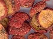 Shan fruit l'aubépine médecine chinoise