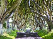 L'Irlande Nord, route pour Chaussée Géants