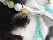 colliers Paris Bonbon MonChouchou pour chiens