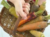 velouté carottes cumin aud' cuisine...