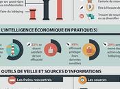 Infographie entreprises bretonnes veille [édition 2013]