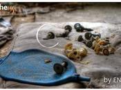 Tchernobyl d'échecs abandonné
