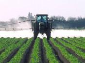 Effets pesticides santé militantisme guise d'information