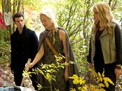 """Originals Synopsis photos promos l'épisode 1.09 """"Reigning Pain Orleans"""""""