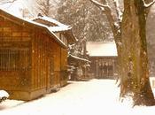 Psychedelic Tokyo Snow
