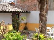L'hôtel Riviera Sucre oasis Otavalo