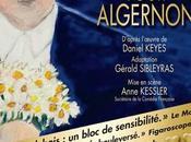 Théâtre Fleurs pour Algernon