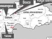 République Centrafricaine CICR lance appel millions d'euros supplémentaires
