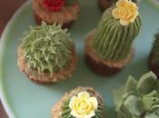 délicieux cactus… cupcakes