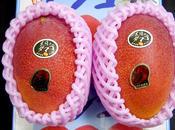 Deux mangues vendues… euros (Japon)