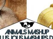 Animals Mashup Photos manipulation