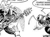 domination cigales québécoises