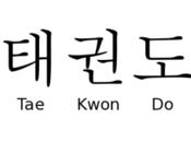 Taekwondo Taekwon-Do