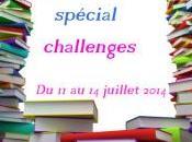 Marathon lecture spécial Challenges juillet 2014 chez Chroniques Littéraires