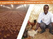 Stop exportations surplus alimentaires européens vers l'Afrique