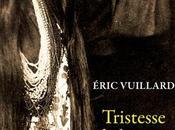 Tristesse terre d'Eric Vuillard