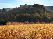 Côtes Lubéron