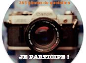 """Défi """"365 Photos quotidien"""" 41ème semaine #41/52"""