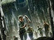 Labyrinthe (The Maze Runner)