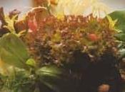 Aspic canard girolles salade d'automne