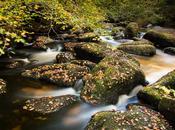 l'automne arrivé Rivière d'Argent Huelgoat photos)