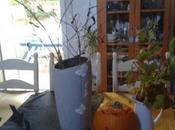 Déco Halloween chauve-souris citrouille grimaçante