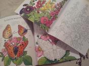 Fleurs papillons colorier