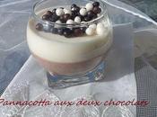 Pannacotta deux chocolats