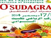 Salon l'agriculture saharienne steppique décembre Oued