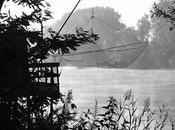 Garonne, long lourd fleuve d'or brun...