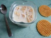 yaourts maison diététiques éclats gaufres avec Sukrin seulement kcalories (sans sucre)