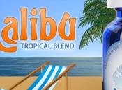 Test avis e-liquide Halo Malibu