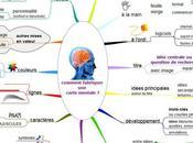 Neurosciences cartes mentales