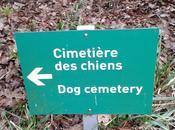Chaumont Chambord