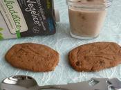 yaourts maison végétaux amande biscuits multicéréales chocolatés (sans gluten, sans lait, lactose sucres ajoutés)