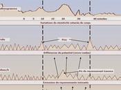 géobiologie scientifique géomagnétomètre