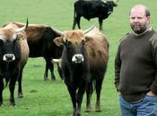 vaches Nazies étaient trop méchantes...