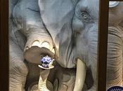 Comme éléphant dans magasin porcelaine