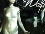 Walpurgis, Congrès sorcières