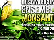 Marche mondiale contre Monsanto Rochelle, Place Verdun,