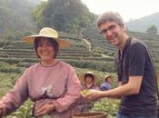 FOOD: Poursuite Diamant Vert thés printemps