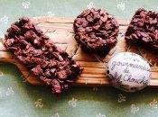 Barre céréales sans cuisson chocolat