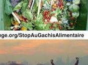 Gaspillage Alimentaire vote Historique